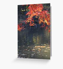 Fall images I Greeting Card