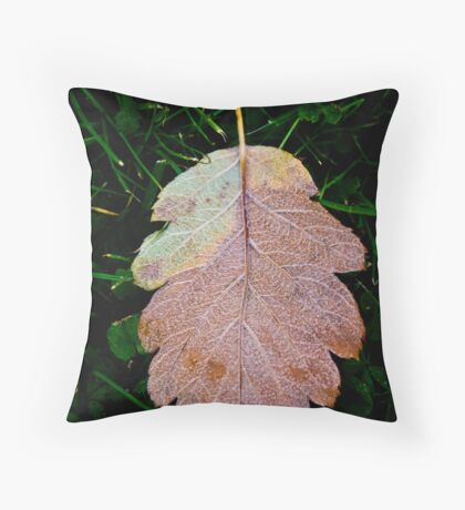 Reluctance Throw Pillow