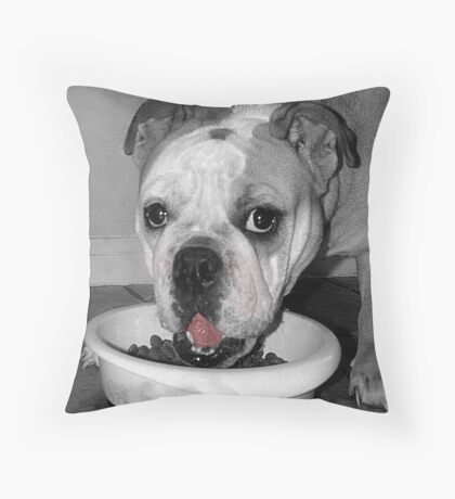 What Diet??? Throw Pillow