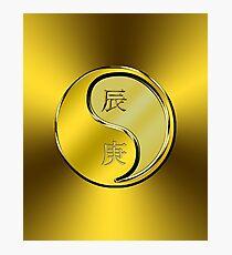 Dragon Yang Metal Photographic Print