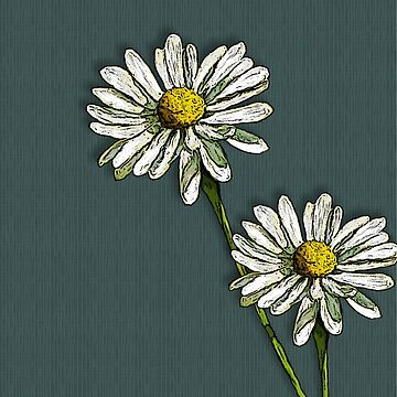 Two Daisies on Deep Green/Blue by Joyce
