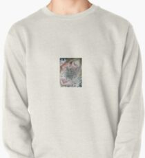 Intuition on Demand Pullover