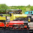 My Train Set (I Wish ! ) 2 by LumixFZ28