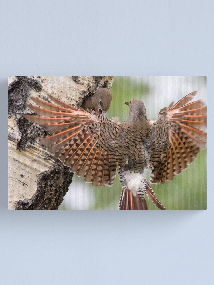 Alternate view of Flicker Breakfast On The Way, with Flare Canvas Print