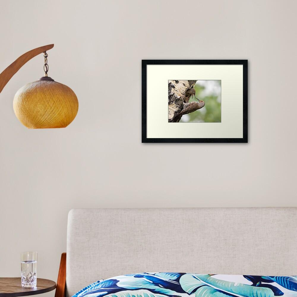 Flicker Breakfast On The Way, Can Almost Taste It Framed Art Print