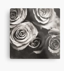 Medium format analog black and white photo of white rose flowers Metal Print