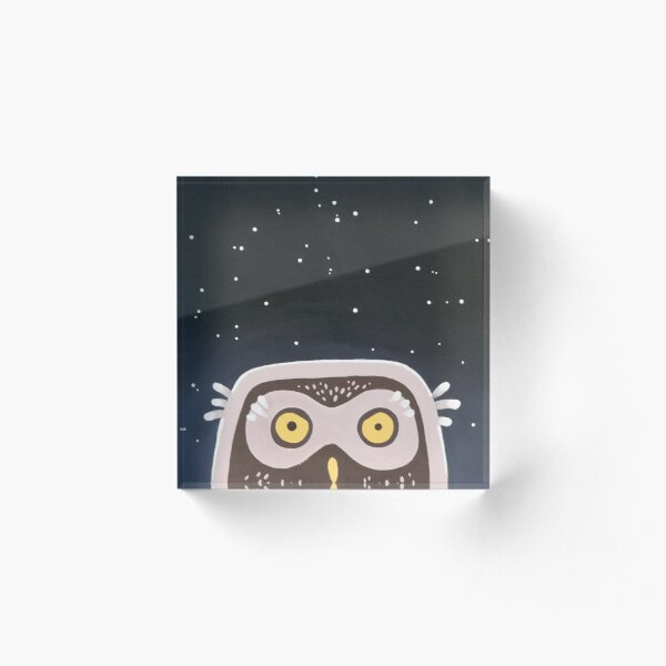 Little Owl Acrylic Block