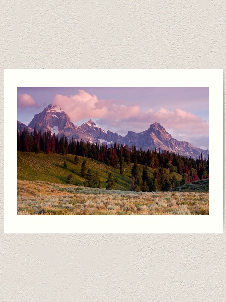 Alternate view of The Grand, Teewinot, and Mt. Owen... the Tetons Art Print