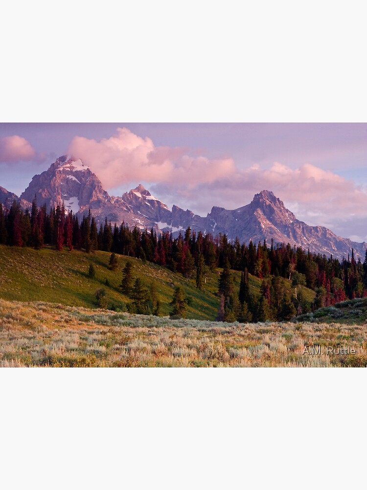 The Grand, Teewinot, and Mt. Owen... the Tetons by annruttle