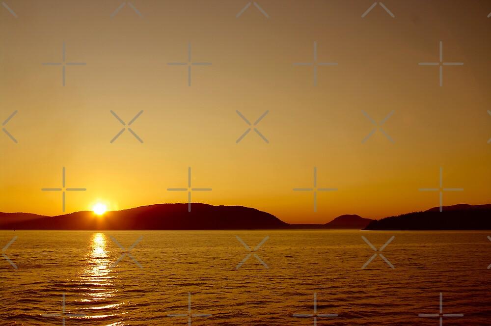 San Juan Island Sunset by Rich Summers