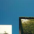 Weißes Quadrat, grünes Quadrat, blauer Himmel von josemanuelerre