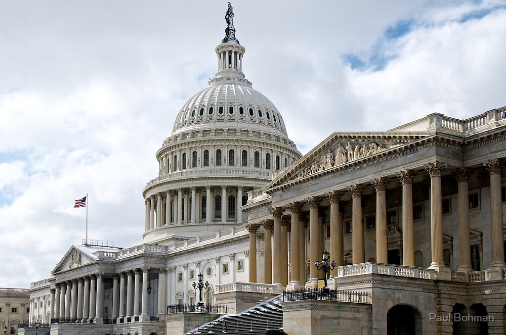 US Capitol, Northeast by Paul Bohman