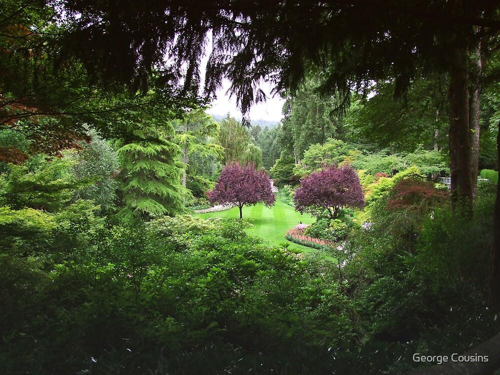 Sunken Garden No.3 by George Cousins