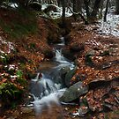 rushmill burn by codaimages