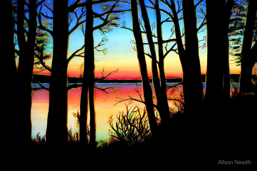 Charlie Lake Sunset Silhouette by Alison Newth