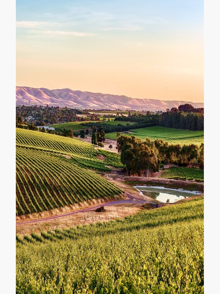 McLaren Vale Magic by RayW