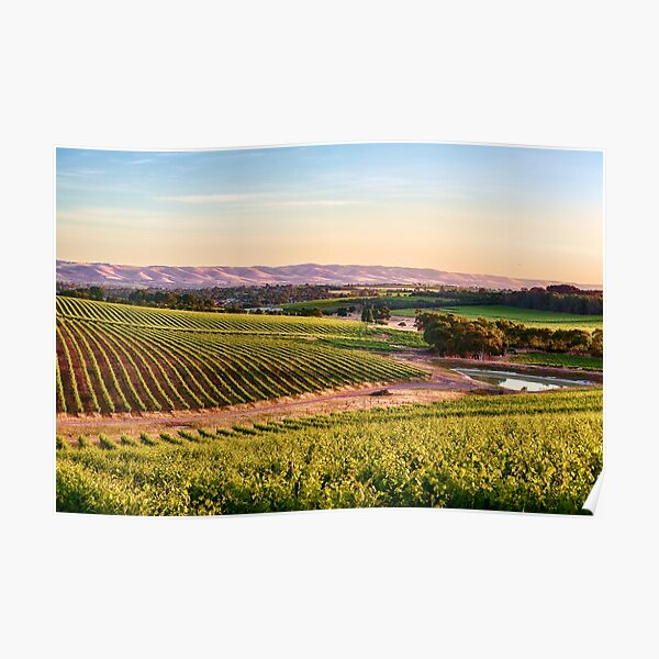 McLaren Vale Magic Poster