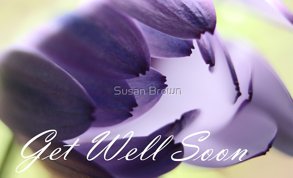 Get Well Soon - Purple Daisy Greeting Card by Susan Brown