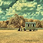 On the wagon by Mark Bangert