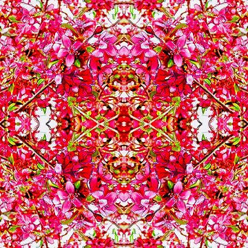 Apple Blossom Fugue Bright Pink Sketch by candypaull