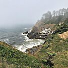 Cape Disappointment Lookout  by Danielle Morin