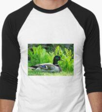 #354            Drake Mallard Duck T-Shirt