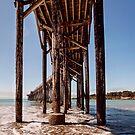 Under the boardwalk by Martha Burns