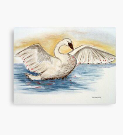 The swan Canvas Print