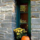 October Window by Margaret Shark