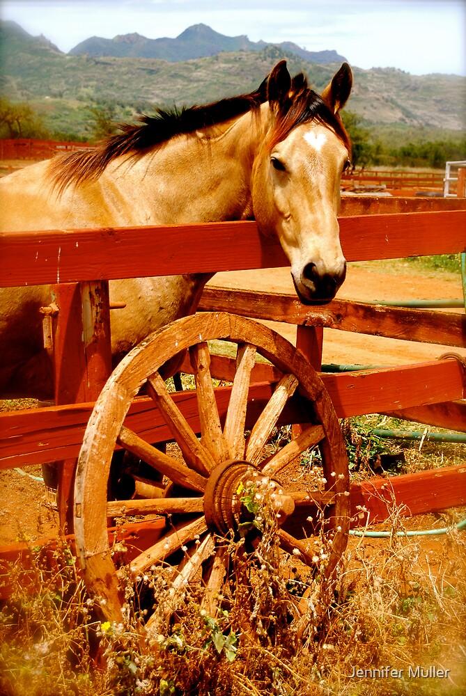 ranch by Jennifer Muller