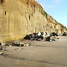 """""""Cliffs At Encinitas Beach"""" by Tim&Paria Sauls"""