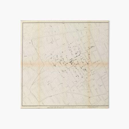 John Snow's Cholera Map Art Board Print