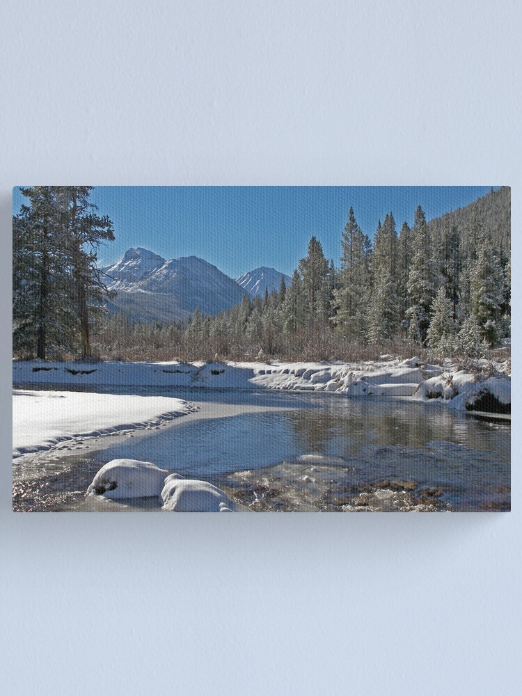 Alternate view of Bright Side of Winter Canvas Print