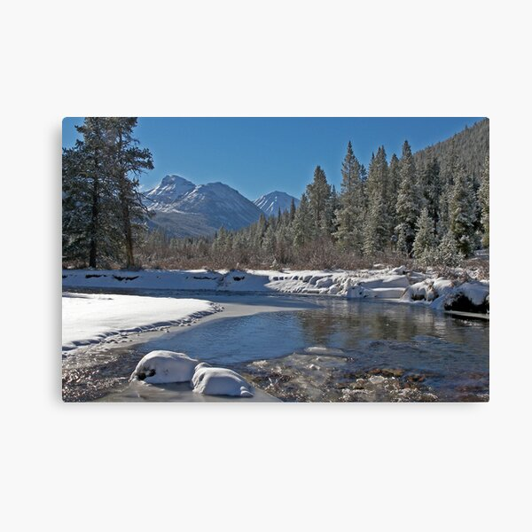 Bright Side of Winter Canvas Print