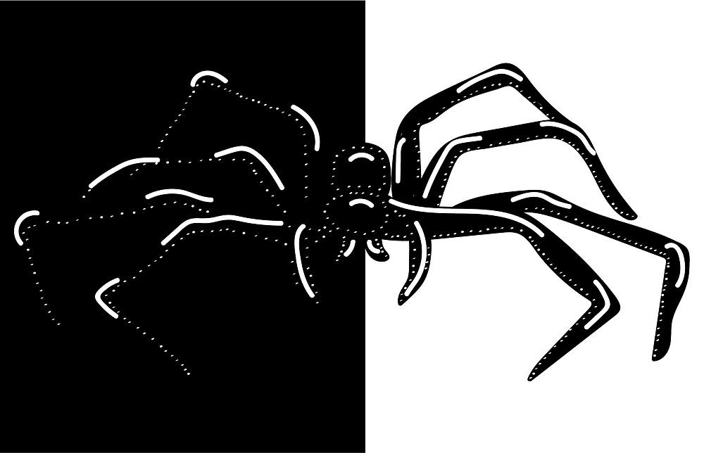 MONO-SPIDER by shonadoolan