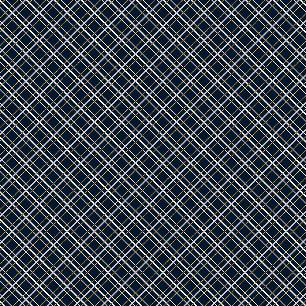Plaid grid 1 by cmadeleine