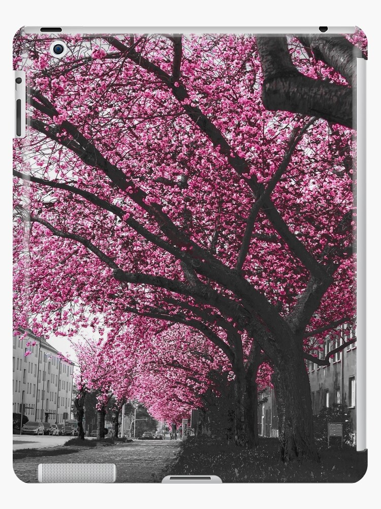 C-Town Spring by ausgefuchstFoto