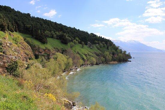 Scream of Spring-Ohrid by Mitko  Peroski