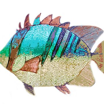A Rainbow Fish by Brydenophyte