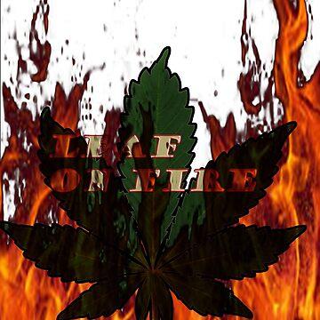 leaf in fire  by ezra054