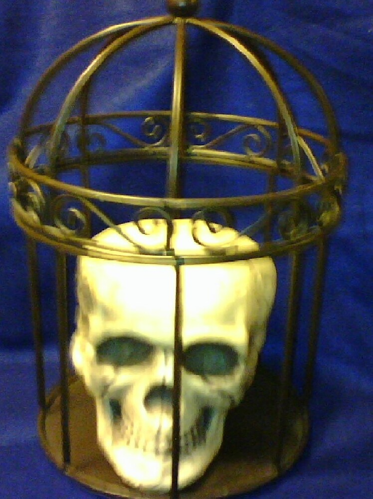 Skull in a Cage by mathgodswoman