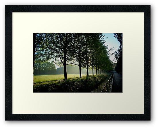 Cambridge Sunrise by Martin Ingley