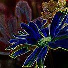 AZUL FLOR by BOLLA67