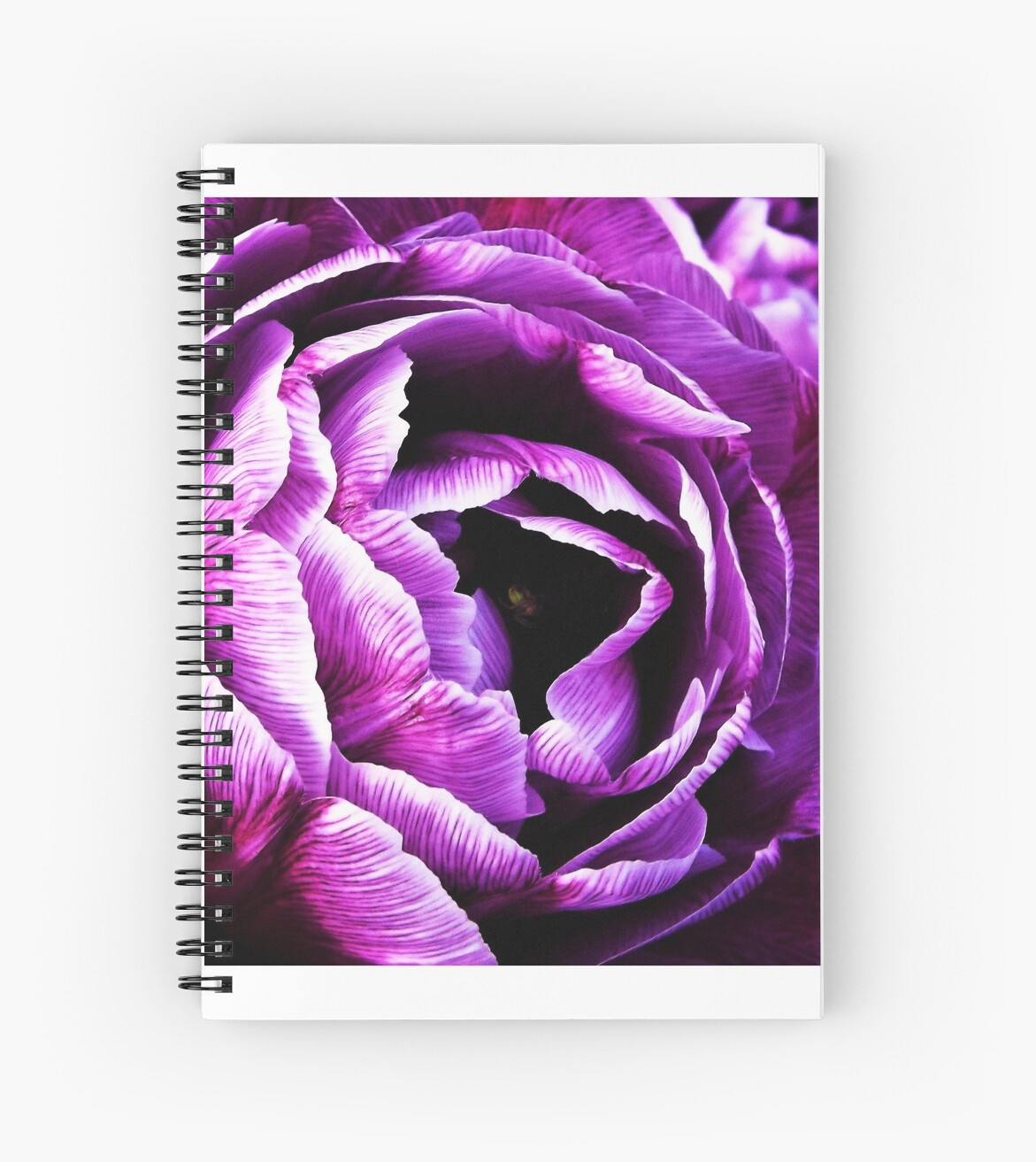 Nature in purple by RuthMason