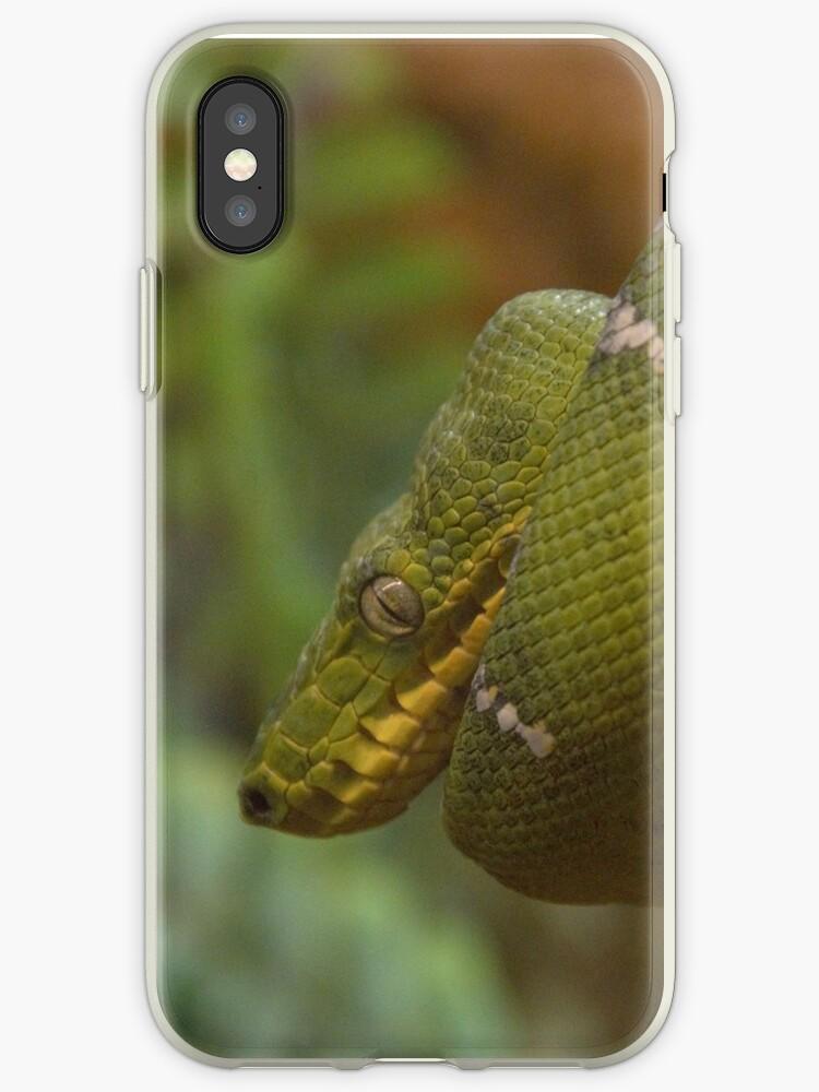 Snake  by clockwisedream