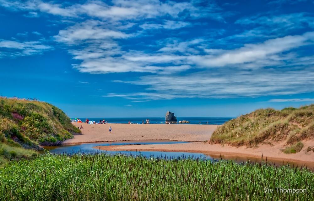 Thurlestone Sands Estuary  by Viv Thompson