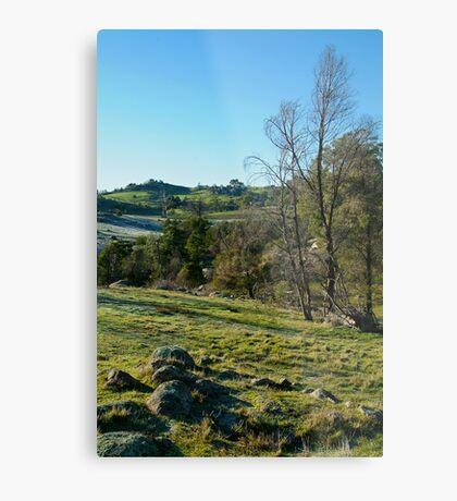 Morning Frost, Strathbogie Ranges,Victoria Metal Print