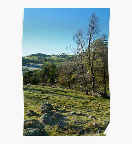 Morning Frost, Strathbogie Ranges,Victoria Poster