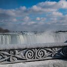iced fencing - Niagara by Perggals© - Stacey Turner