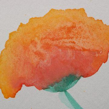 Soft Poppy by pcknockoutart